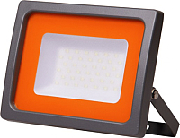 Прожектор JAZZway PFL-SC 6500К (5001404) -