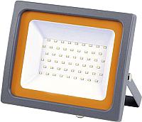 Прожектор JAZZway 5001435 -