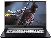 Игровой ноутбук Dream Machines G1650-17BY25 -