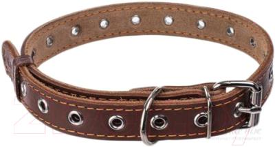 Ошейник Collar 1516 (коричневый)