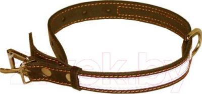 Ошейник Collar 2496 (коричневый, светоотражающий) - общий вид