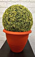 Кашпо Gardenplast Виола (терракотовый) -