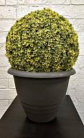 Кашпо Gardenplast Виола (графитовый) -