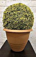 Кашпо Gardenplast Виола (карамель) -