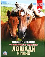Энциклопедия Умка Лошади и пони -