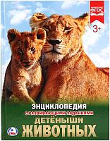 Энциклопедия Умка Детеныши животных -