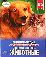 Энциклопедия Умка Домашние животные -