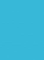 Пленка самоклеящаяся Color Dekor 2009 (0.45x8м) -