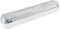 Светильник для подсобных помещений TDM SQ0353-0005 -