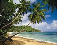 Фотообои Komar Tropical Sea 8-308 (368x254) -