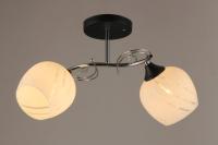 Потолочный светильник Mirastyle SX-2738/2 -