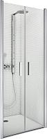 Душевая дверь Roltechnik Tower Line TCN2/120 (матовое серебро/intima) -