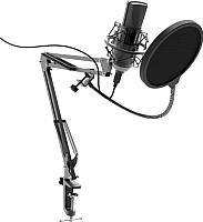 Микрофон Ritmix RDM-180 (черный) -
