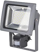 Прожектор Elektrostandard 003 FL LED 30W 6500K IP44 -