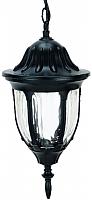Светильник уличный Camelion 4505 С02 / 10535 (черный) -