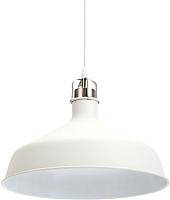 Потолочный светильник ЭРА PL2 WH/SN / Б0037434 -