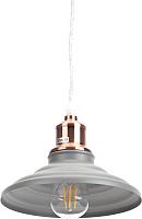 Потолочный светильник ЭРА PL4 GR/RC / Б0037449 -