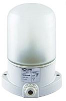 Светильник ЖКХ TDM SQ0303-0048 -