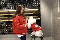 Куртка для животных Nicovaer 02181 (S) -
