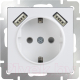 Розетка Werkel WL01-SKGS-USBx2-IP20 / a033473 (белый) -