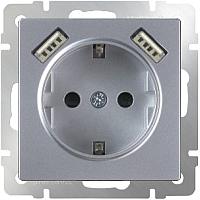 Розетка Werkel WL06-SKGS-USBx2-IP20 / a033474 (серебряный) -