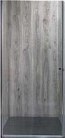 Душевая дверь Coliseum 289-80 (тонированное стекло) -