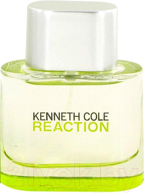 Купить Туалетная вода Kenneth Cole, Reaction (50мл), Сша