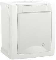 Розетка Panasonic Pacific WPTC42122WH-BY -