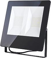 Прожектор Elektrostandard 011 FL LED 100W 6500K IP65 -