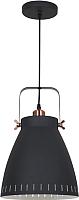 Потолочный светильник Camelion PL-428L C62 / 13072 (черный+медь) -