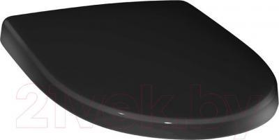 Сиденье для унитаза Roca Victoria Nord ZRU9302627 (черное) - общий вид