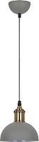 Потолочный светильник Camelion PL-601S C68 / 13101 (серый+старинная медь) -
