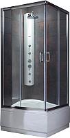 Душевая кабина Radaway Premium Plus C900 / 30451-01-06N -
