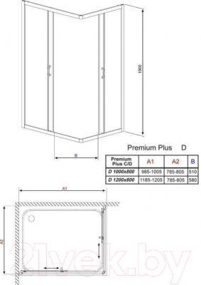 Душевое ограждение Radaway Premium Plus D1000 / 30434-01-01N