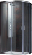 Душевое ограждение Radaway Premium Plus E1900 / 30491-01-06N -