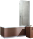 Стеклянная шторка для ванны Radaway EOS PNJ 70/R / 205101-101R -