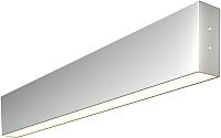 Подсветка для картин и зеркал Elektrostandard 101-100-30-53 10W 3000K (матовое серебро) -