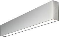 Подсветка для картин и зеркал Elektrostandard 101-100-30-53 10W 6500K (матовое серебро) -