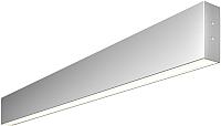 Светильник Elektrostandard 101-100-40-78 30W 4200K (матовое серебро) -