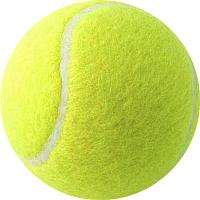 Набор теннисных мячей Head Penn Coach Red Label / 524306 -
