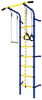 Детский спортивный комплекс Romana ДСКМ-2С-7.06.Г1.410.14-24 (синий/желтый) -
