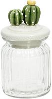 Емкость для хранения Tognana Transparenz Cactus / T65BAL60092 (8x15) -