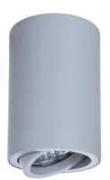 Точечный светильник Arte Lamp Sentry A1560PL-1GY -