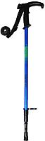 Палки для скандинавской ходьбы No Brand DS2 (синий) -