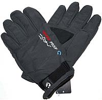 Перчатки лыжные No Brand G29 (черный) -