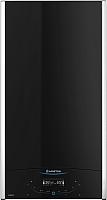 Газовый котел Ariston Alteas X 24 СF NG / 3300844 -