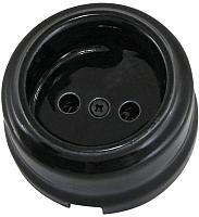Розетка TDM Болонь SQ1820-0005 (черный) -