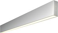 Подсветка для картин и зеркал Elektrostandard 101-100-30-78 15W 3000K (матовое серебро) -