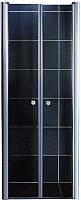 Душевая дверь Coliseum 7016 190x90 (матовое стекло) -