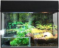 Террариум Lucky Reptile Стартовый комплект для амфибий / SK80BP-B (черный) -